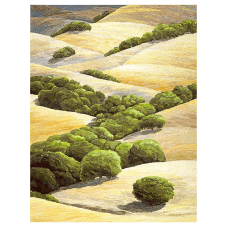 Bay Area Foothills<p> <h8>Limited Edition</h8>
