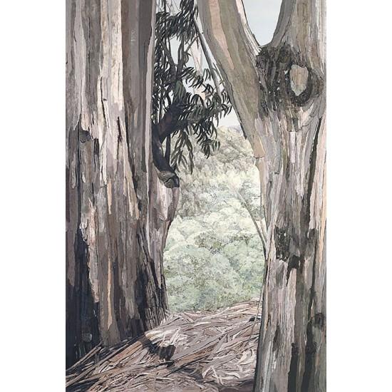Eucalyptus<p> <h8>Limited Edition</h8>