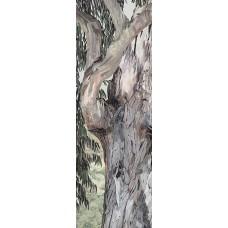 Eucalyptus II<p> <h8>Limited Edition</h8>