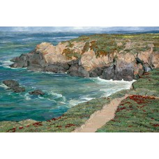 Coast<p> <h8>Open Edition</h8>