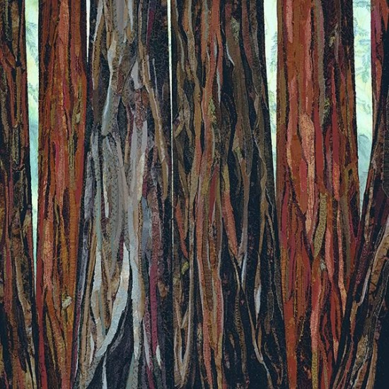 Headwater Redwoods<p> <h8>Open Edition</h8>