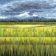 Mt. Shasta<p> <h8>Open Edition</h8>