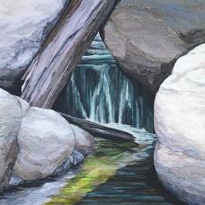 Tuolumne River<p> <h8>Open Edition</h8>