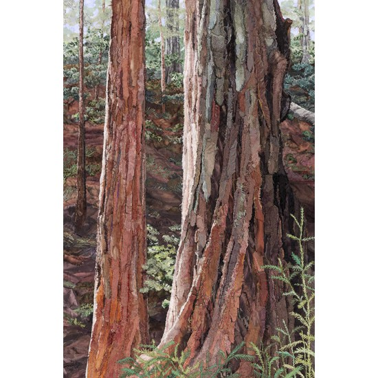 Redwoods 2<p> <h8>Limited Edition</h8>